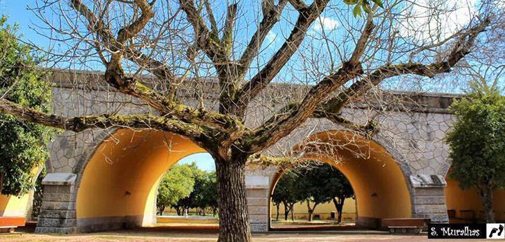 Jardim das Laranjeiras - Susana Muralhas