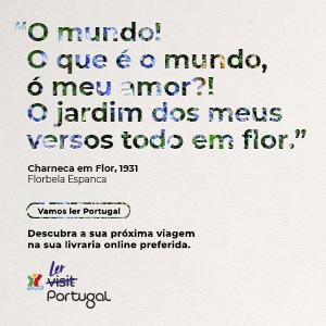 Vamos La Portugal_Perspetiva